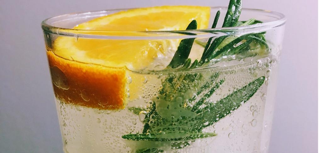 Recipe Idea: Rosemary and Orange Gin and Tonic